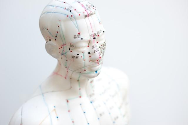 Akupunktur Atlas – Bahnen